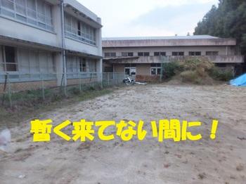 DSCF1872.JPG