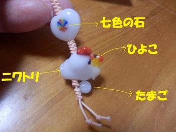 P1300343-1.jpg