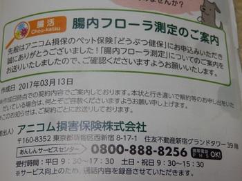 P3211988.JPG