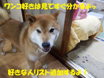 P3222016-1.jpg