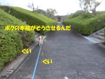 P9271232-1.jpg