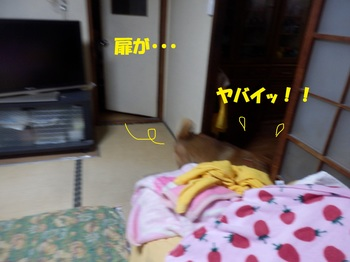 PA171873-1.jpg