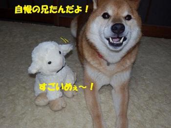 PC093387-1.jpg