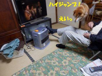 PC273893-1.jpg